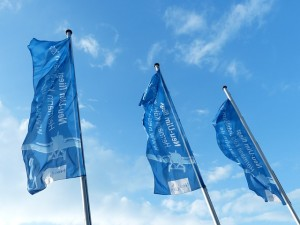 flags-143264_640