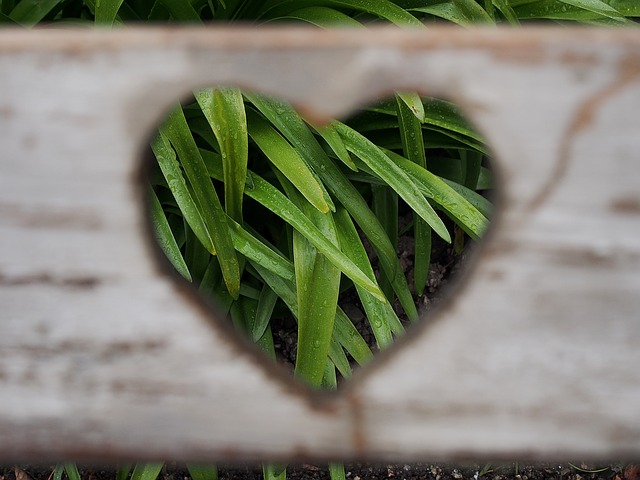 love-1333508_640